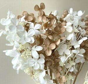 DRIED FLOWERS HYDRANGEA BEIGE WHITE STEM ARTIFICIAL SILK FLOWERS DIY ARRANGEMENT
