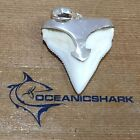 B43 27MM BULL SHARK TOOTH SILVER U WILL GET ITEM IN PHOTO! GOT SWORD ARROW