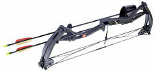 Crosman Wildhorn Compound Archery Bow Kit 29lb Draw