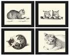 Unframed Cat Cats Animals Prints Set of 4 Antique Farmhouse Home Decor Wall Art