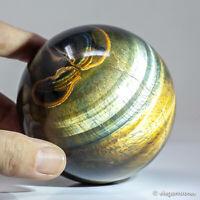 797g 83mm Natural Golden Yellow Tiger Eye Quartz Crystal Sphere Healing Ball