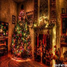 Christmas 10'x10' Computer/Digital Viny Photo Scenic Background Backdrop BHF419