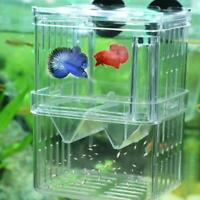 1 pcs Fish Breeding Boxs Shrimp Fish Tanks Incubator Aquarium Tansparent T1Y5