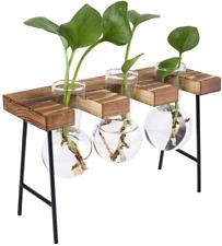 TQVAI Air Plant Terrarium Glass Vase(3 Bulb Vase) with Retro Wooden Mini Bench S