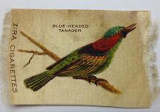 New listing Blue Headed Tanager Rare Bird Zira Cigarette Silk 1900s Turn of Century