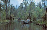 Waycross Georgia 1950-60s Postcard Okefenokee Swamp Park Boat Tour