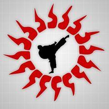 Chinese Tribal Sun decal, Taekwondo kicker wall sticker, Martial arts wall decal