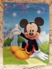 Disney Mickey Minnie pasaporte id de viaje de identidad cubrir titular Vacaciones Lindo Regalo