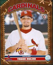 Yadier Molina Photo Card St. Louis Cardinals 8x10 Photo With Toploader Yadi