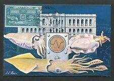 Mónaco Mk 1960 NOCSICentro museo pulpo Octopus maximum card mc cm d6751