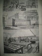 MEDECINE SCIENCES LA RAGE LABO PASTEUR EXPLOSION RUE SAINT-DENIS GRAVURES 1884