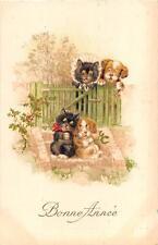 FRANCE HAPPY NEW YEAR DRESSSED ANIMALS CAT & DOG POSTCARD