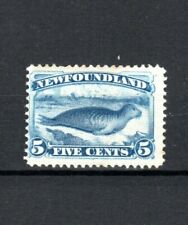More details for canada - newfoundland 1894 5c bright blue common seal mlh