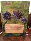 Black Lotus Collectors' Edition P9 MTG Magic Altered Art Custom Hand Painted Hot