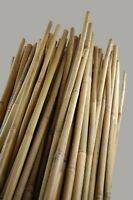 "4' Natural Bamboo Stakes - Garden Stakes - 3/8"" Diameter - 500 per Bundle"