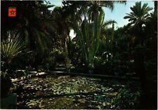 CPM MAROC-Marrakech-Jardin Majorelle (328866)