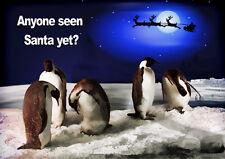 FUN PENGUINS SANTA CHRISTMAS CARD PERSONALISED INSIDE + Illustrated insert  A5