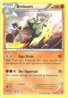 3 x Pokemon Card - XY Furious Fists 50/111 - BRELOOM (rare) - NM/Mint
