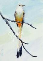 ACEO bird Scissortail Flycatchers Texas animal wildlife art print