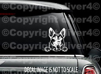 Bugs Bunny peeking on car truck SUV window laptop Kitchen wall macbook decal sticker Approx 6x3 inches white