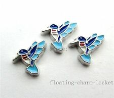 10pcs Humming Bird Floating Charms Fit For Memory Living Locket  FC473