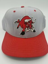 VTG Tucson Toros New Era Snap Back MiLB Hat Cap Made in USA
