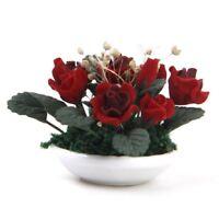 1/12 Plantas de arcilla en miniatura de casa de munecas Rosa gypsophila flo J9N2