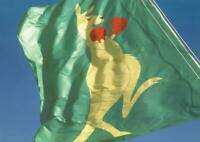 BOXING KANGAROO FLAG POSTCARD -  OFFICIAL AUSTRALIA POST PC - NEW & PERFECT