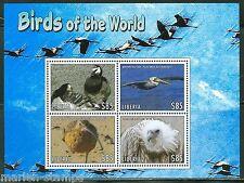 LIBERIA 2013 BIRDS  OF AFRICA  SHEET  I  MINT NEVER HINGED