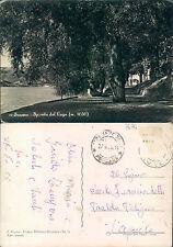 SCANNO (AQ) - SPONDA DEL LAGO m. 1030          (rif.fg.7674)