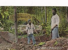 Panama Natives Digging Ancient Indian Graves For Gold Ornaments & Pottery sk3156