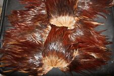 Fly Tying Select Dark Red-Brown Cockerel Saddle Cape