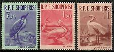 Albania 1961 ☀ Fauna / Birds - Complete set of 3v ☀ MNH**