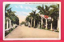Postcard FL Fort Myers McGregor Blvd Royal Palms 1920s 1930s Vintage Card A8