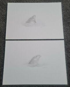 2x John Grant Original Carp Drawings - Fishing - ( no book)