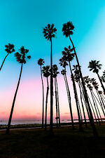 STUNNING RETRO PALM TREE SUNSET CANVAS #230 QUALITY PICTURE A1 CANVAS WALL ART
