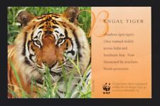 The Bengal Tiger WWF Postcard Once roamed widely across India & Southeast Asia