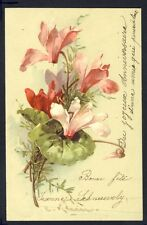 CARTE POSTALE Illustration Litho Signée C. KLEIN Flowers Blumen Fleurs CYCLAMEN