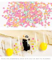 Nail Art schillernde Formen Pailletten Glitter Rabbit Butterfly Dekoration Yd