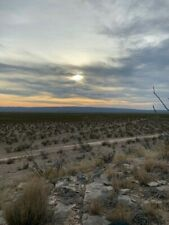 West Texas Mule Deer Hunt