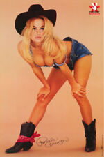 LOT OF 2 POSTERS: PLAYBOY - PAM ANDERSON - SEXY COWGIRL -FREE SHIP  #2749 RP59 H