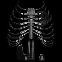 Amped Up Guitar Skeleton Skull Microphone Rock Music Lovers T-Shirt Tee