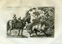 ANTIQUE PRINT-AESOP'S FABLES-BOAR-DONKEY-Barlow-1802