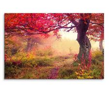 Markenlose Deko-wandbilder mit Landschafts-Thema