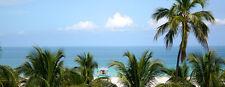 Crescent Resort on South Beach Miami, FL Jul July Aug Sep Sept- 1 bdrm Florida