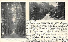 POSTCARD    HERTS   BRICKENDON  Lake  and  Ware  Park  Avenue