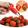 High Strawberry Tomato Stem Leaves Huller Remover Fruit Corer Kitchen type