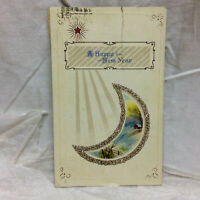 Vintage Embossed Happy New Year Greeting Postcard 1922 Moon Celestial