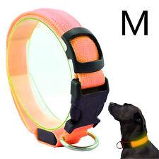 Hunde LED Halsband Orange Größe M 40-48 cm Leuchtstreifen Leuchtband Warn Signal