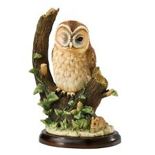 Border Fine Arts Studio - Owl Collection - Tawny Owl with Mouse - A27053